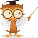 teaching-owl-12936458